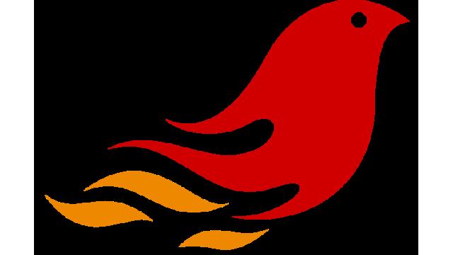 phoenix2d for robocup